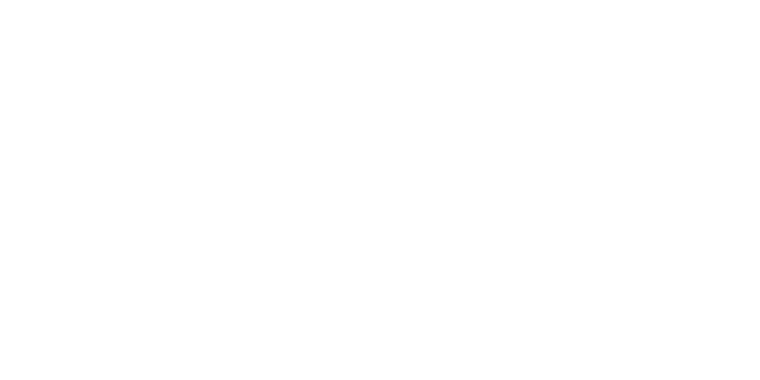 Evolution Safety Turn Signal Inserts
